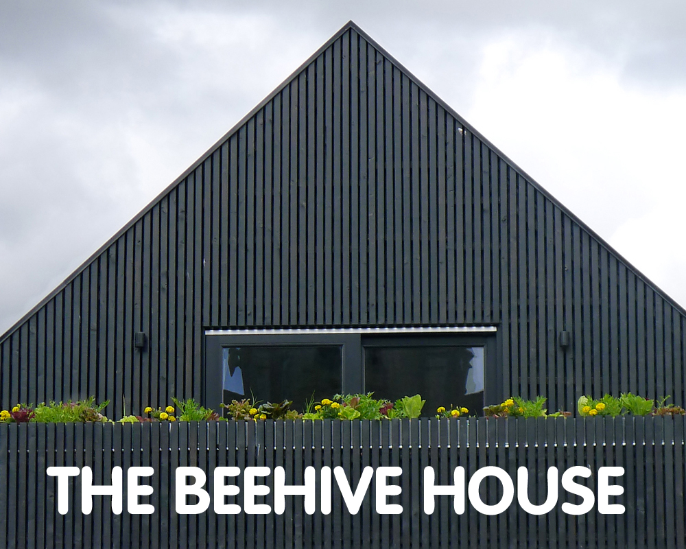 The Beehive House